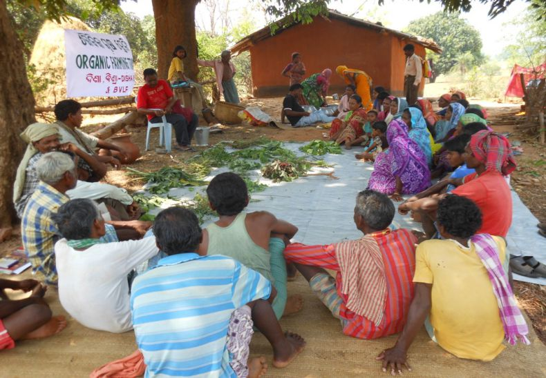 Organic farming training in village