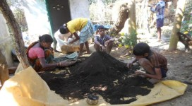 Produced organic manure